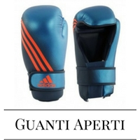 Guanti Point Fighting