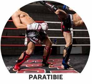 paratibie kick boxing