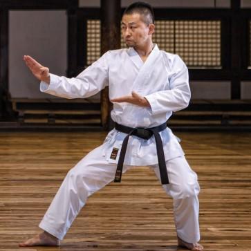 Karategi da Kumite Tokaido Hayate