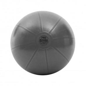 Gym Ball Pro Toorx AHF-149 ø75 cm