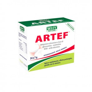 Artef Why Sport