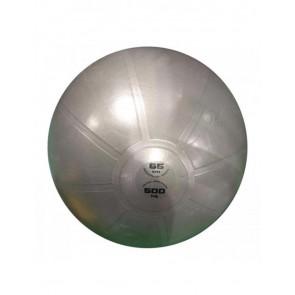 Gym Ball Pro Toorx AHF-148 ø65 cm