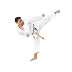 Karategi Tokaido Ultimate Saw Tradizionale