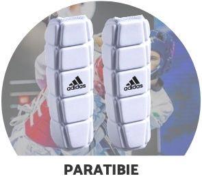 Paratibie Taekwondo