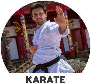Karate Venum